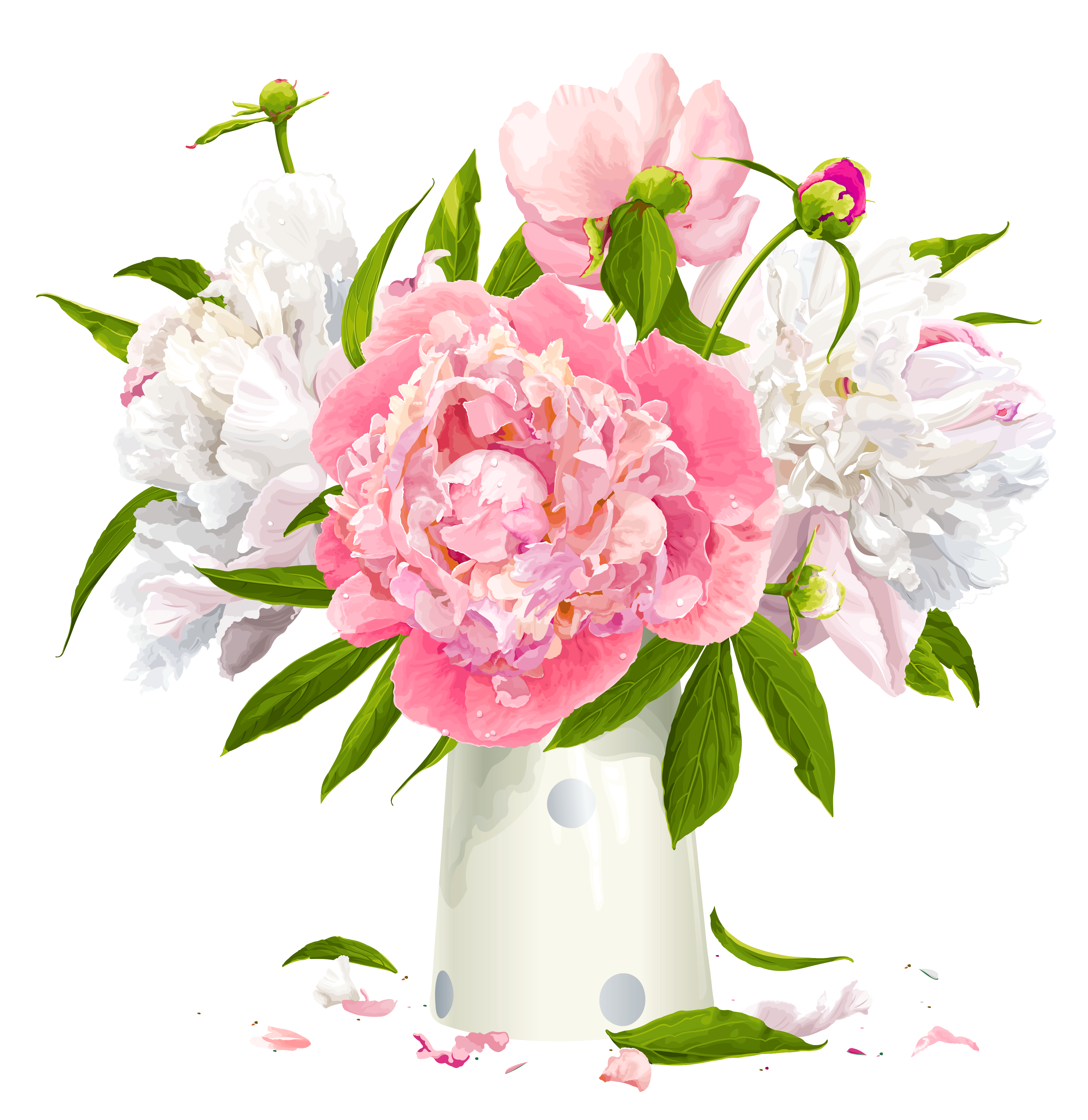 picture black and white stock Peonies clipart. Vase with white and