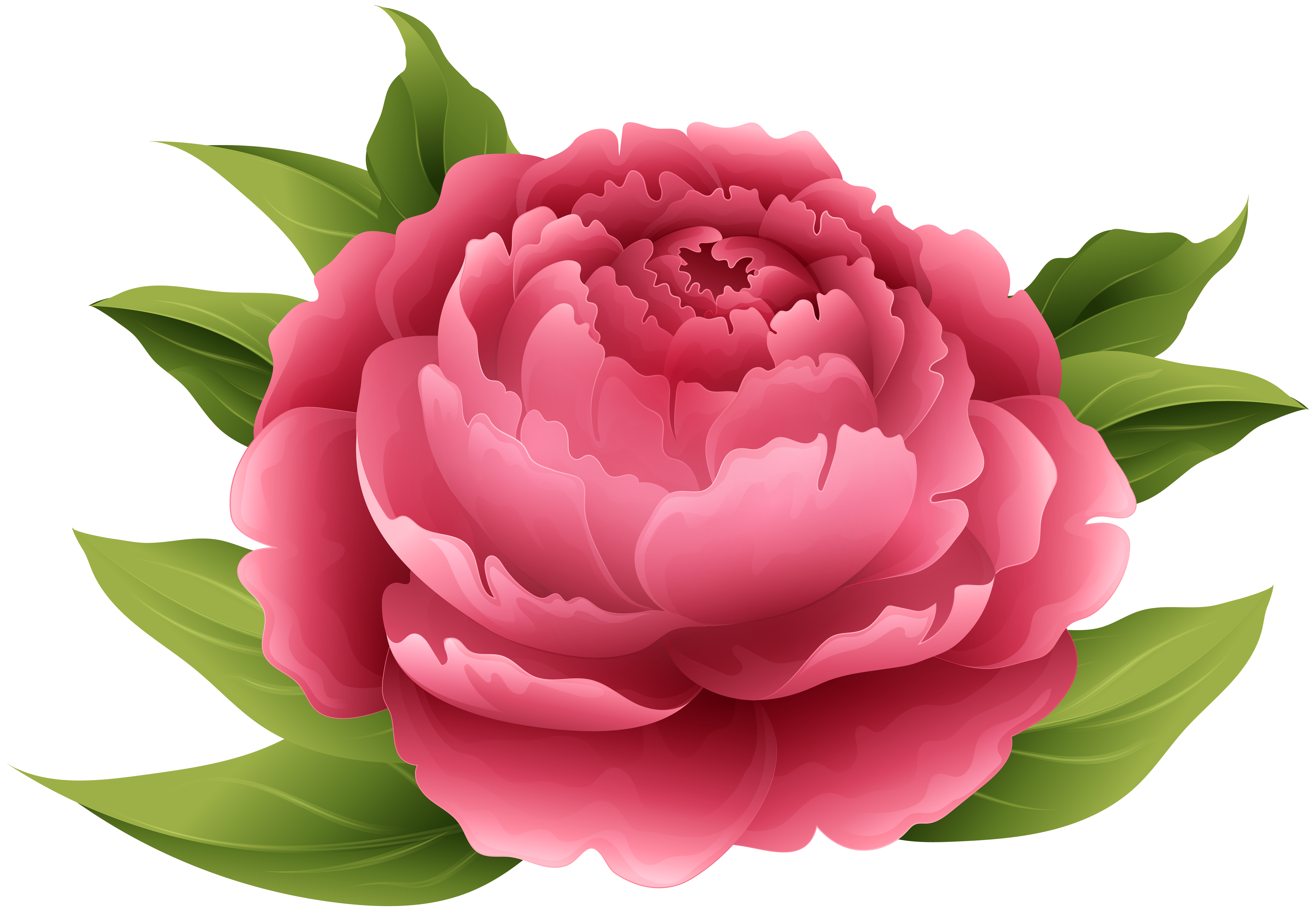 svg black and white download Peony clipart. Red png clip art.