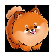 svg stock Pomeranian vector. Dog lots of clip