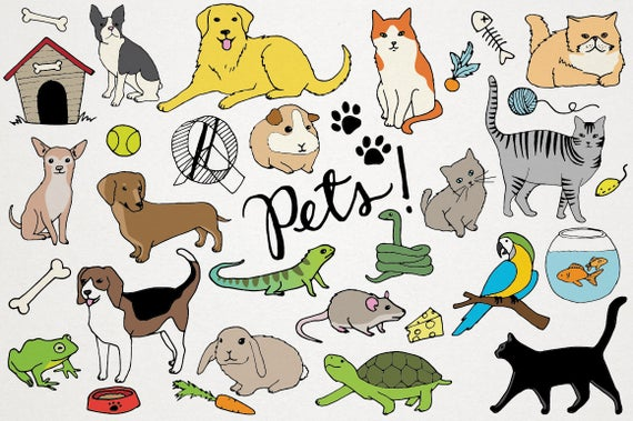 svg royalty free stock Animals clip art cats. Pets clipart