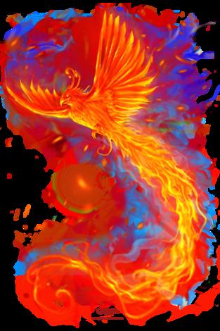 image free library Animal Fire Phoenix Design Idea