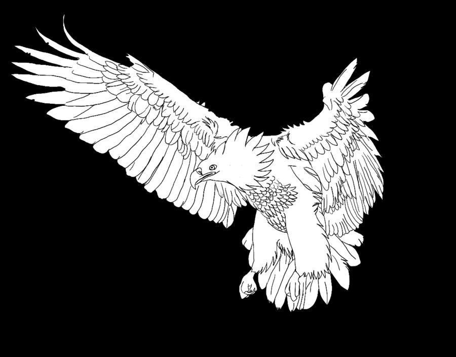 banner free stock Realistic Phoenix Practice by DevourArts on DeviantArt