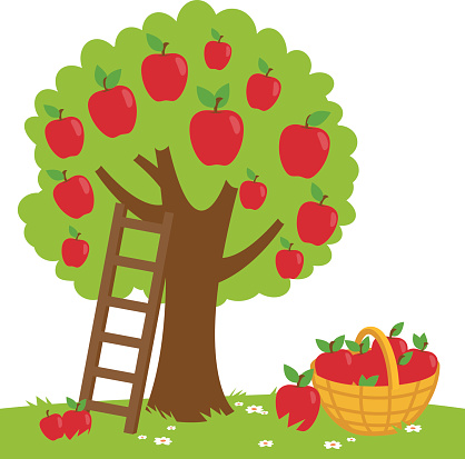 banner freeuse Free apple cliparts download. Picking apples clipart
