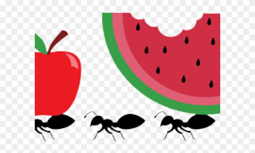 image free library Ant item png download. Picnic ants clipart