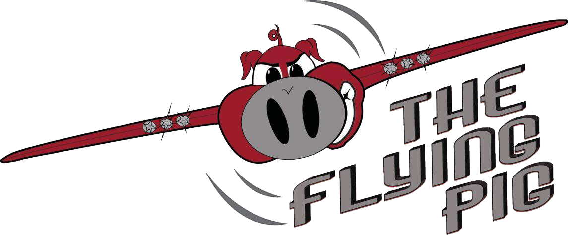 royalty free stock The Flying Pig