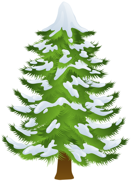 clip freeuse stock Pine clipart. Winter tree transparent png