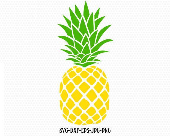 vector transparent library Svg summertime summer beach. Pineapple clipart