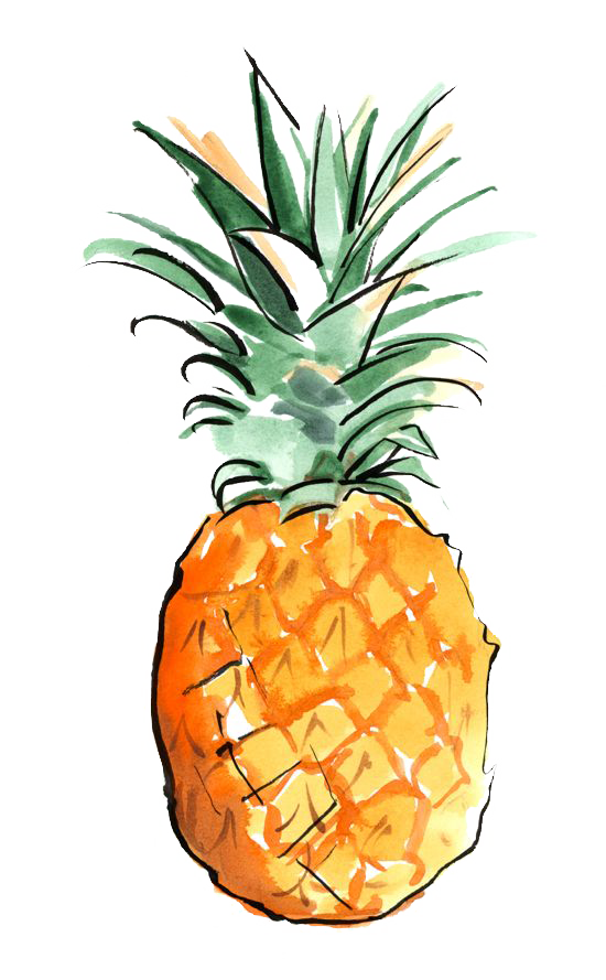 vector freeuse stock Los angeles art wallpaper. Pineapples drawing