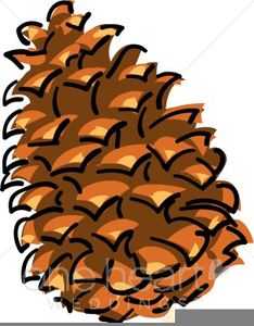 graphic freeuse stock Pinecone clipart. Free images at clker.