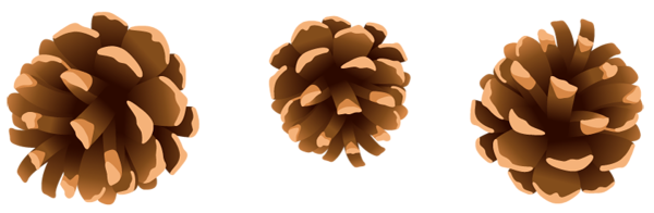 image freeuse library Pinecone clipart. Group gallery free pictures.