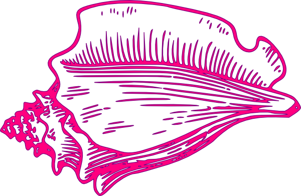 svg library Pink Yellow Conch Shell Clip Art at Clker