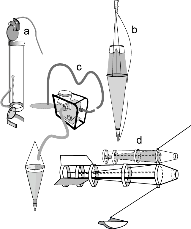 clipart library Sampling devices used and. Zooplankton drawing