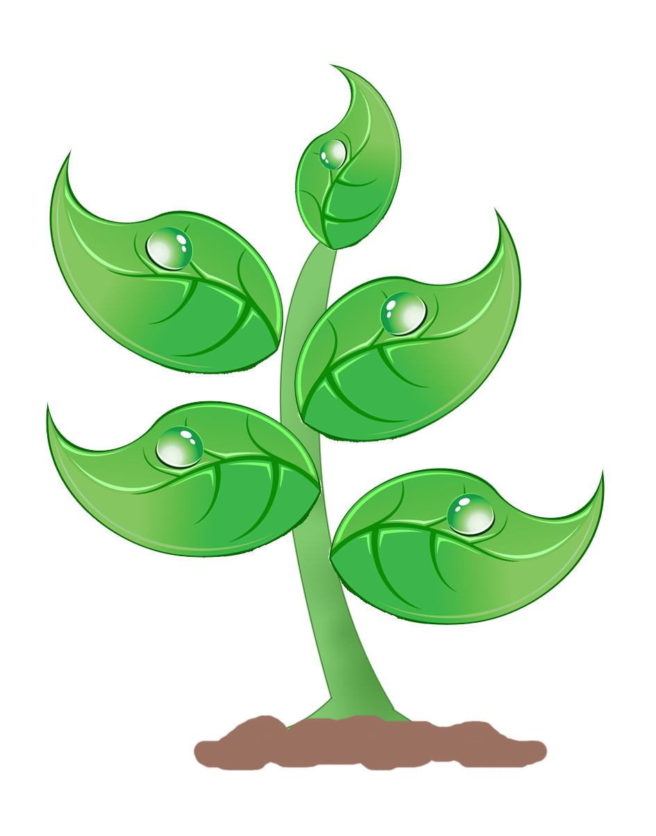 clip free stock Free large plant cliparts. Plants clipart