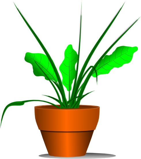 graphic royalty free Free plant graphics of. Plants clipart