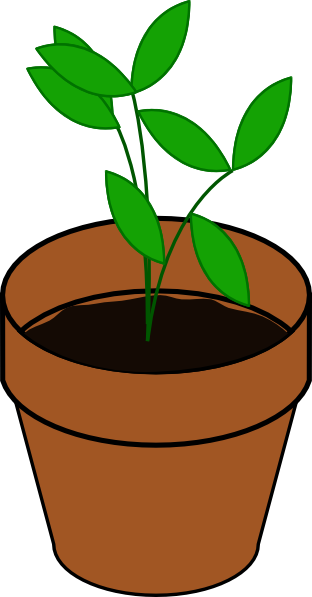 picture transparent stock Plant In Pot Clip Art at Clker