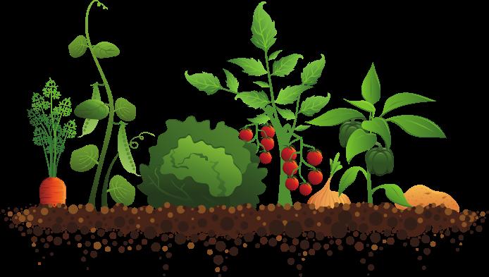 image royalty free stock free clipart gardening #63591981