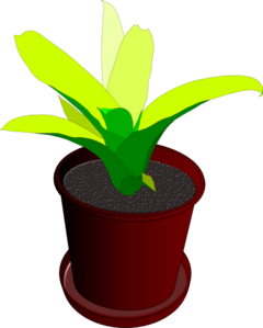 free download Planting clipart potted plant. Pot planted flower free.