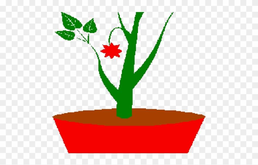 clip art freeuse download Pot png download . Planting clipart potted plant.