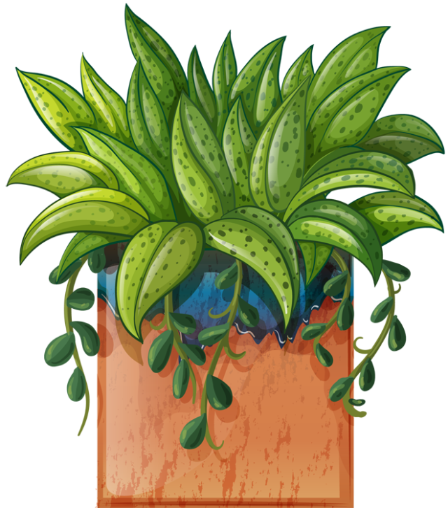jpg download Clip art of beautiful. Planting clipart potted plant.