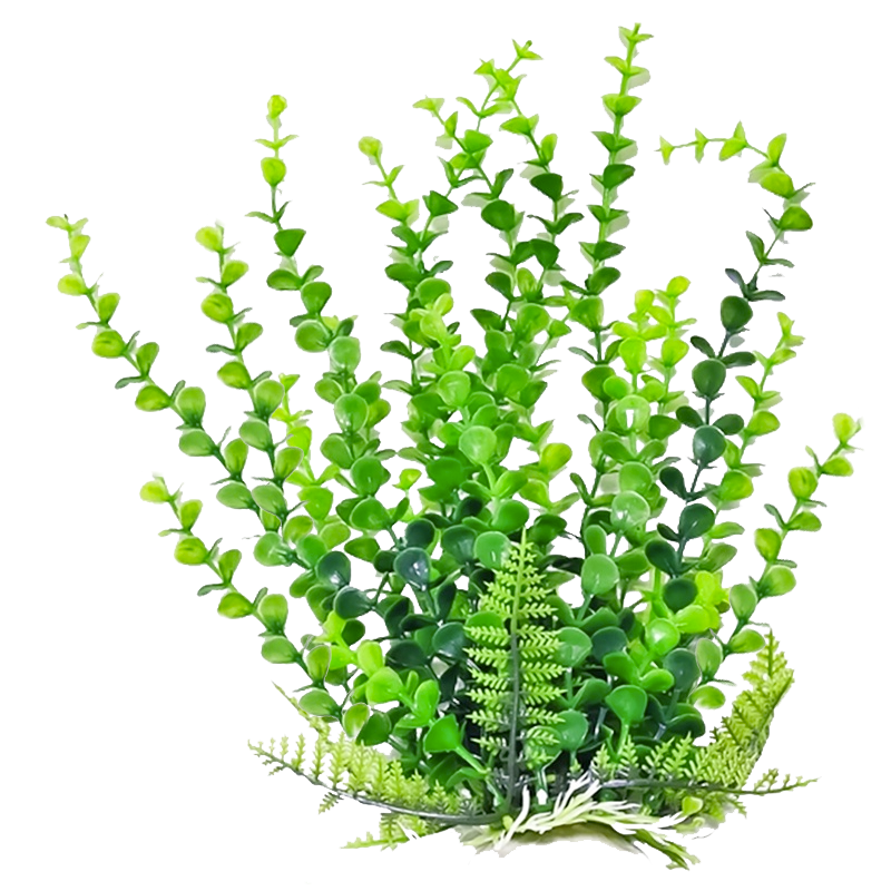 png freeuse stock Plants clipart. Photos png transparentpng