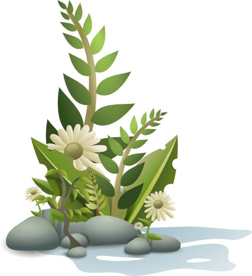 vector transparent library Plants clipart. Free plant graphics of