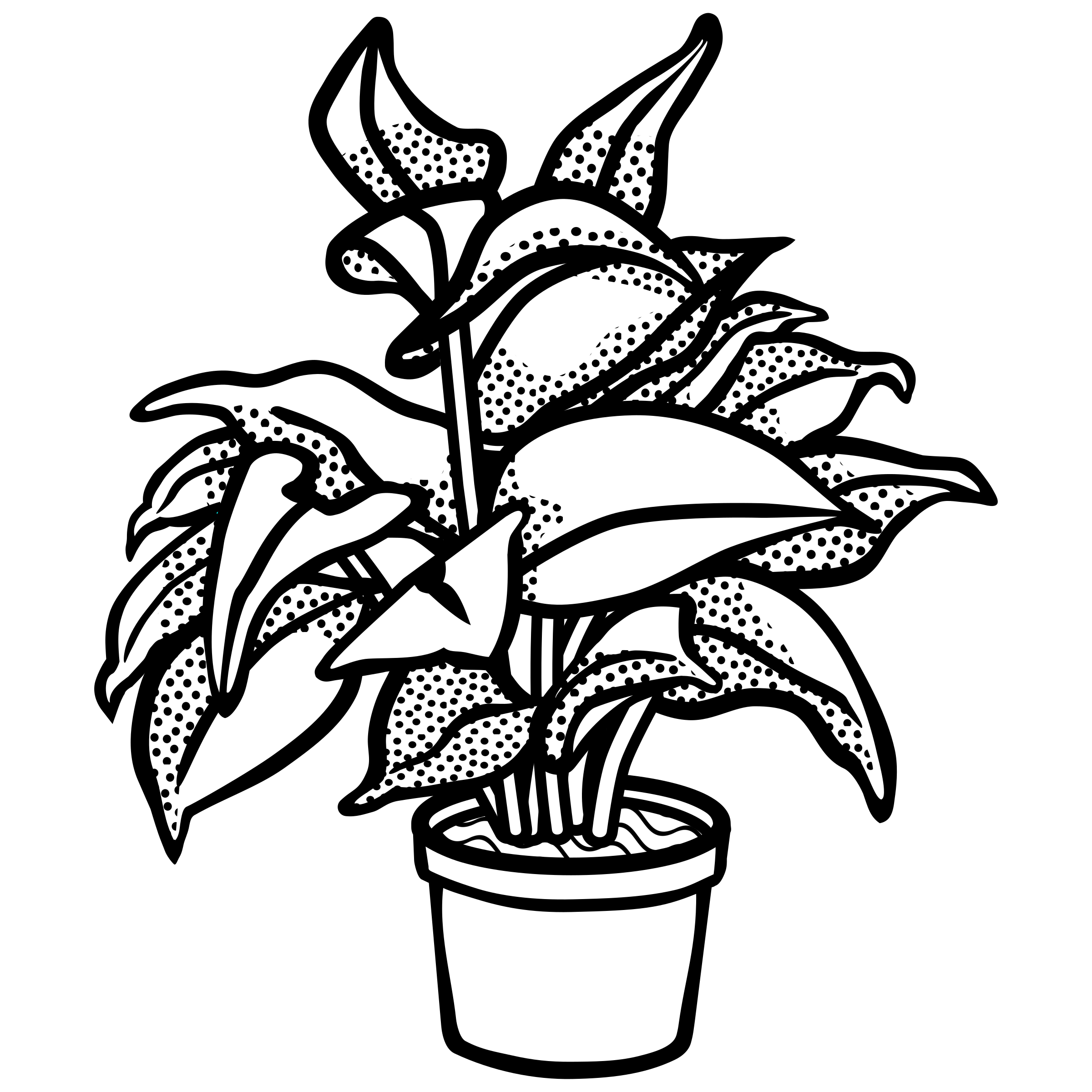 graphic transparent stock vector plants black and white #108258672