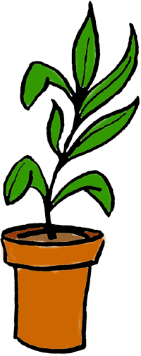 png freeuse library A perfect world clip. Plants clipart