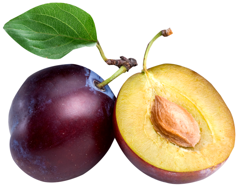 image royalty free download Fruit transparent plum. Large png clipart gallery
