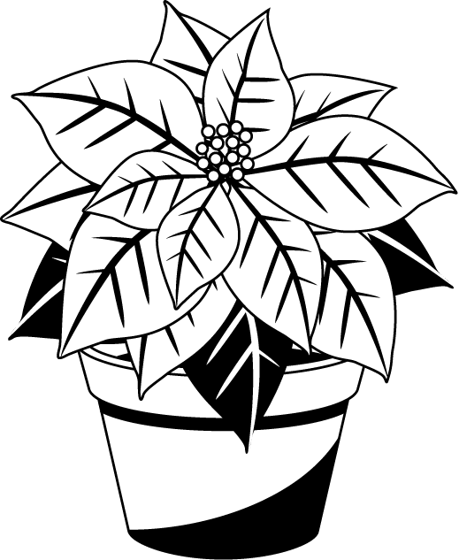 clip art library poinsettia clipart black and white #45543166