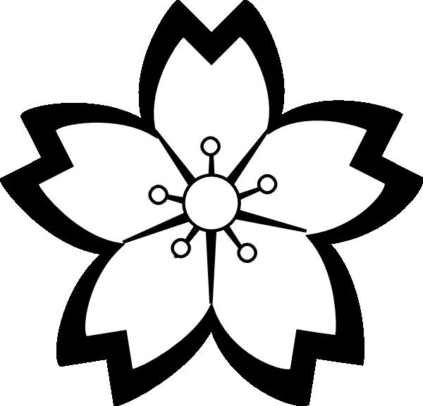 jpg download Sakura flower templates pinterest. Poinsettia clipart black and white free
