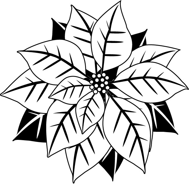clipart black and white library Poinsettias in happy holidays. Poinsettia clipart black and white