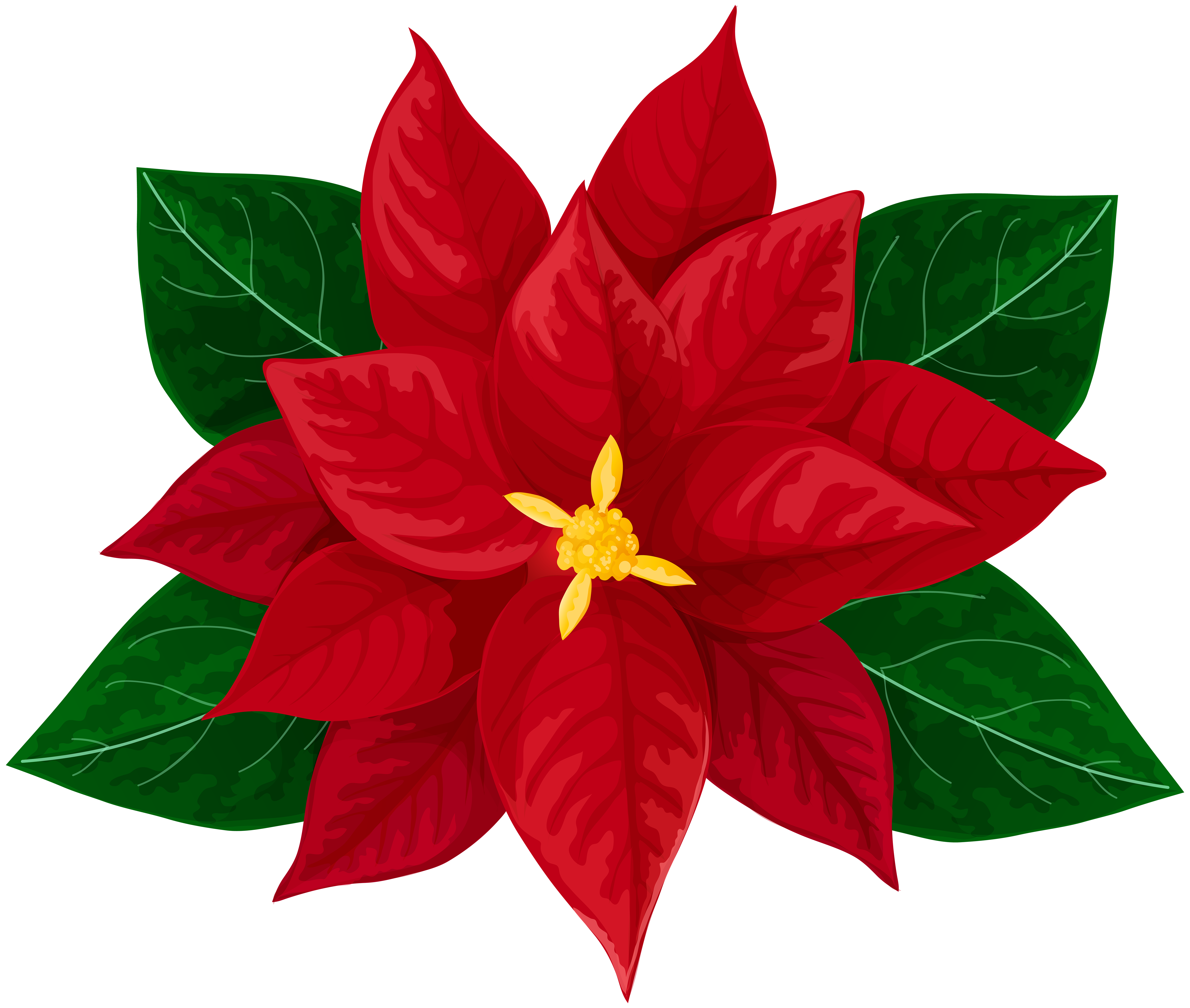 svg royalty free library Transparent clip art image. Poinsettia svg.