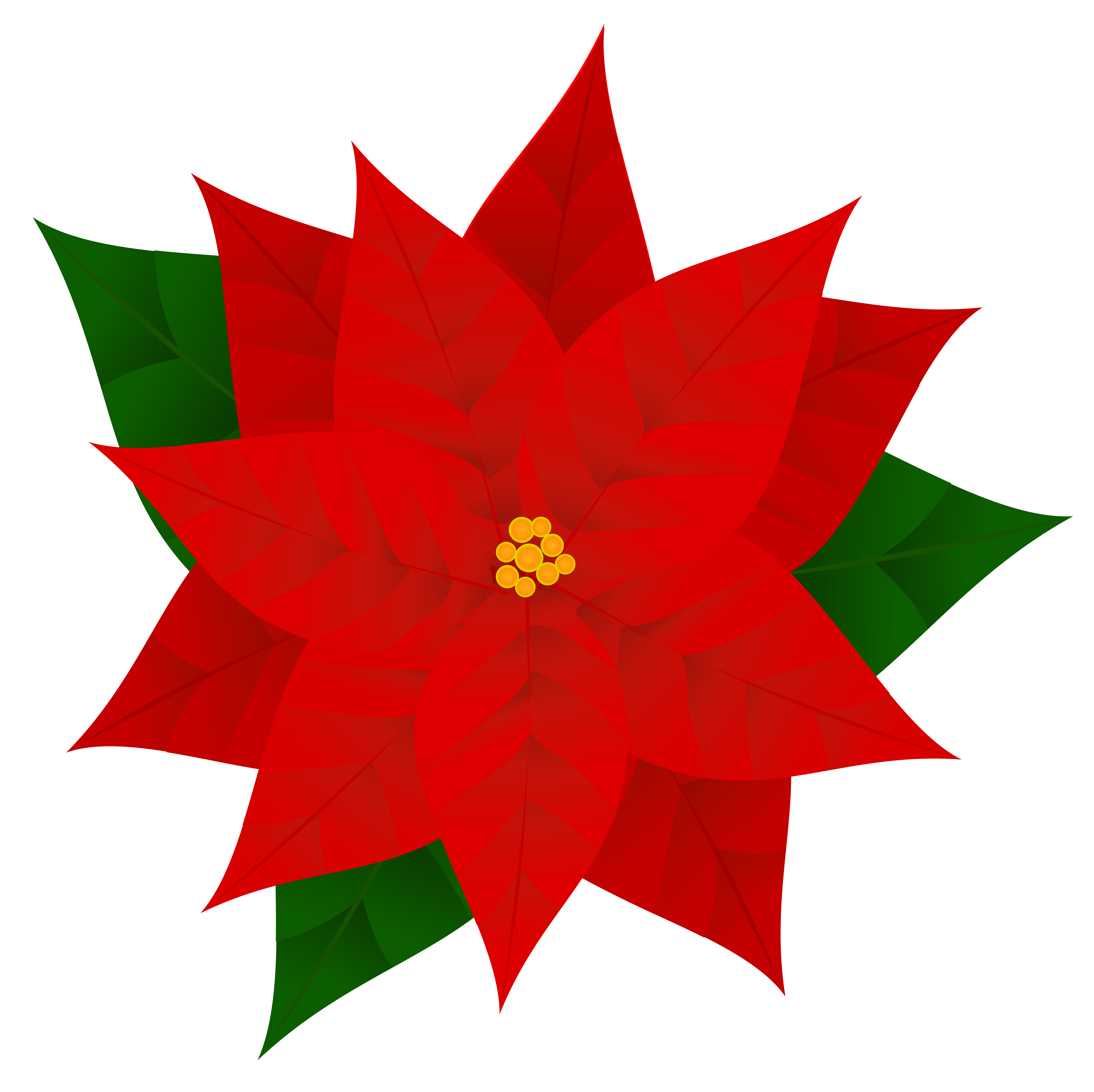 banner royalty free stock Poinsettias clipart. Free cliparts download clip.