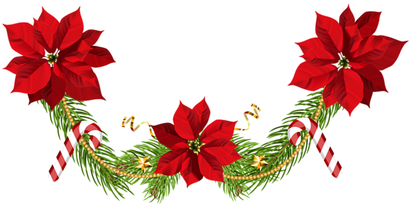 png free stock Christmas garland clip art. Poinsettias clipart.