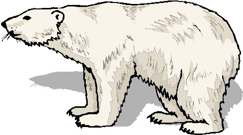 image freeuse library Polar bear clipart free. Download clip art