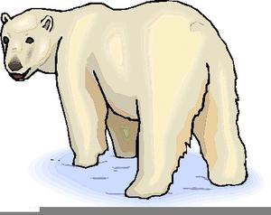 clip art royalty free download Coca cola images at. Polar bear clipart free