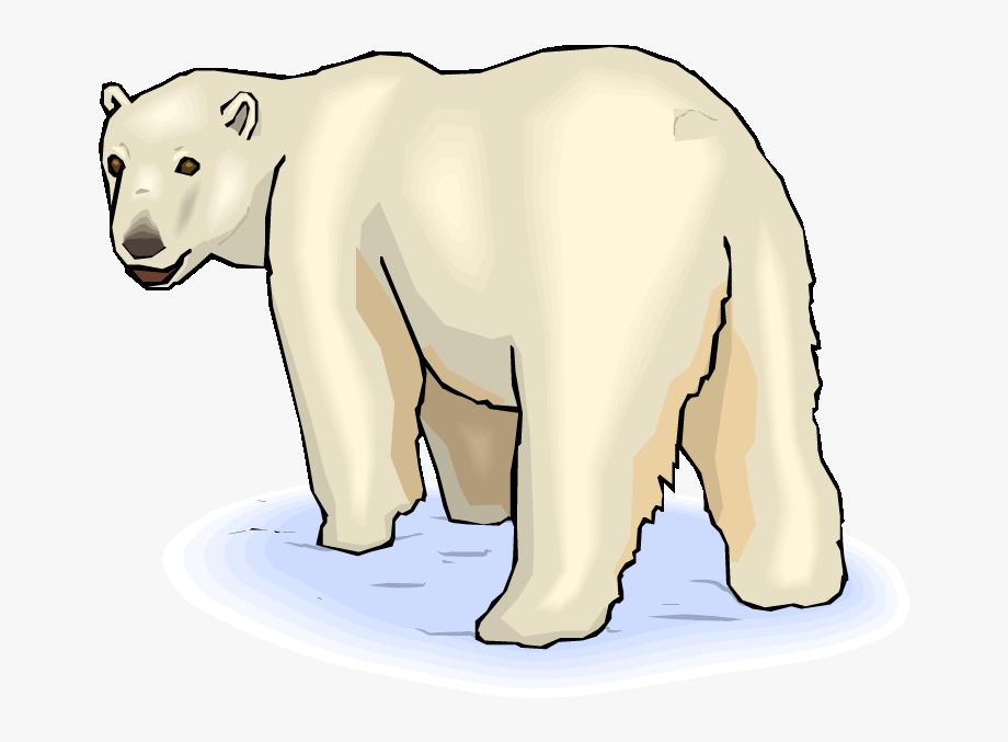 image stock Pin baby clip art. Clipart polar bear