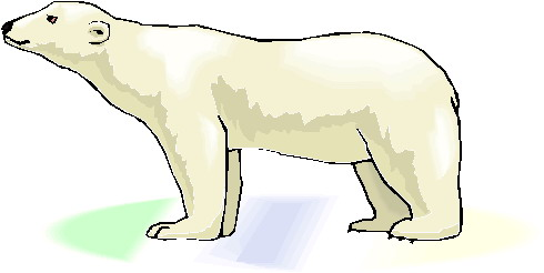 vector royalty free download Art kid clipartix . Polar bear clipart free