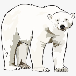 clipart black and white stock Download for free png. Standing polar bear clipart