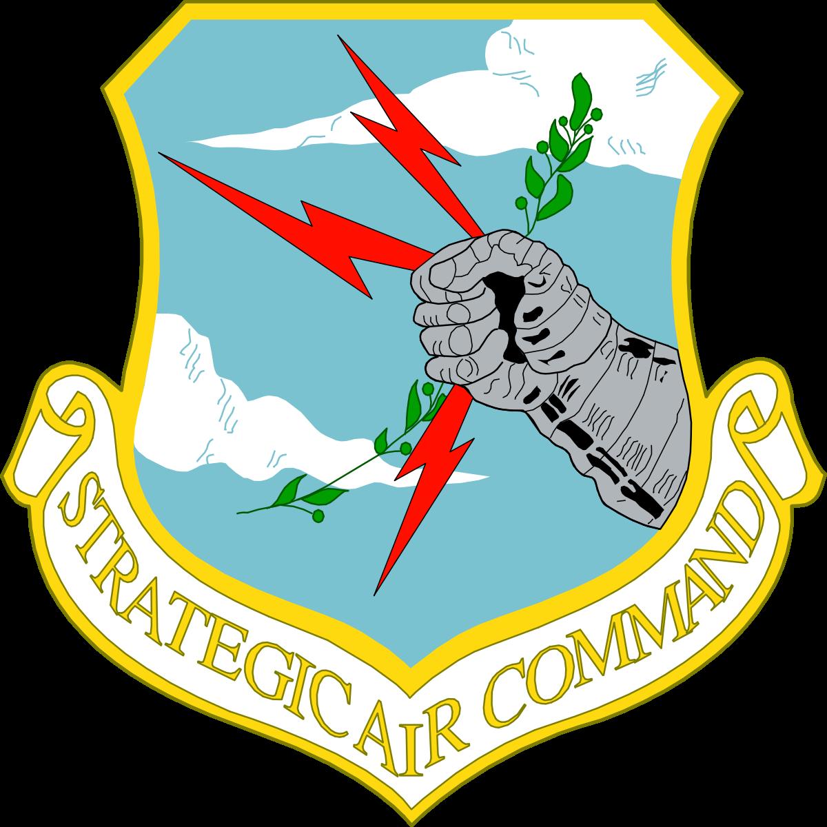 image free stock Strategic Air Command Elite Guard