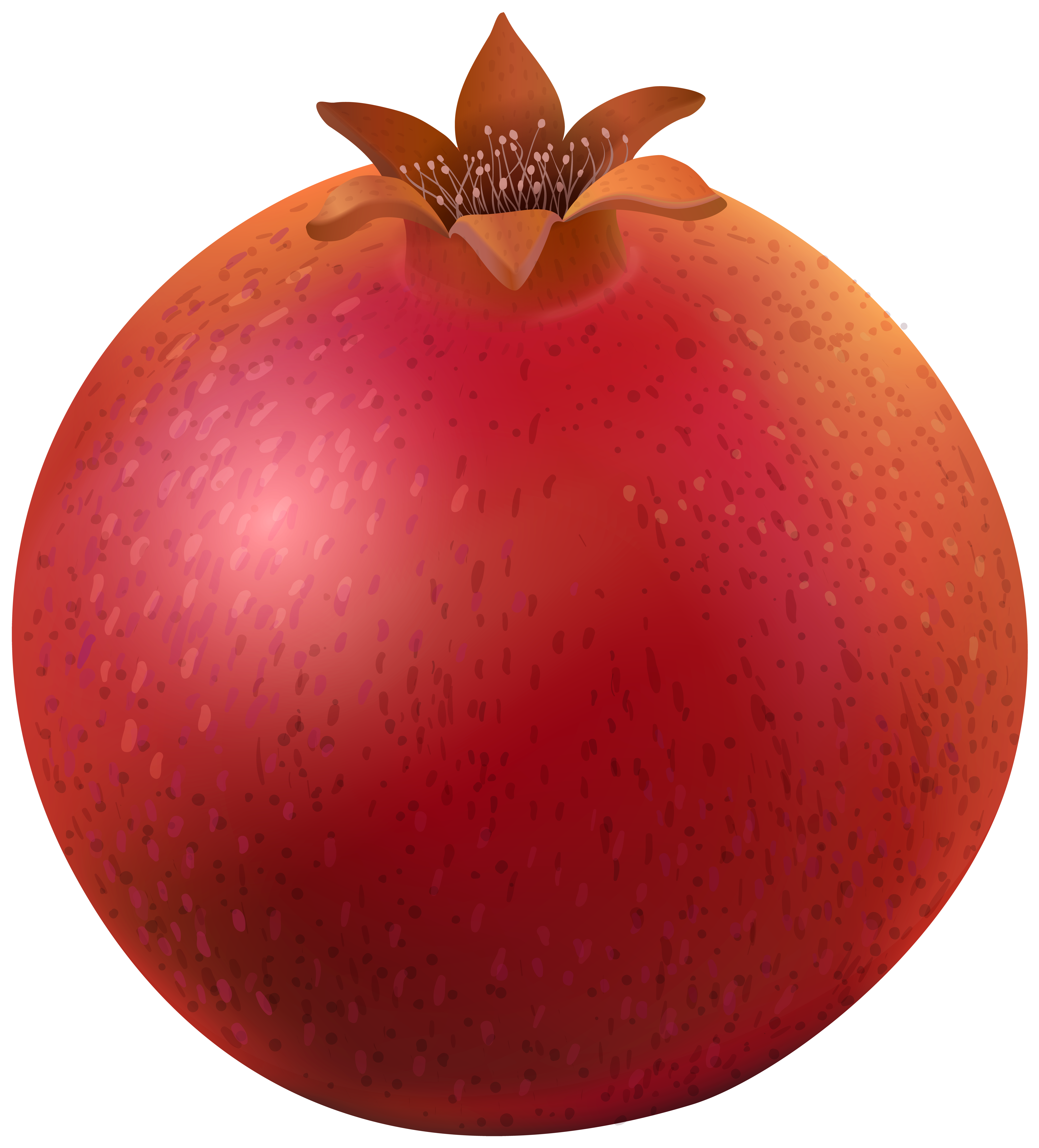 royalty free download Pomegranate clipart. Png clip art image.