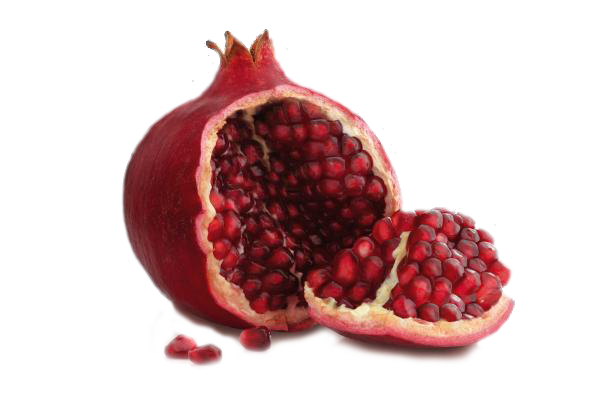 clip black and white stock Png images free download. Pomegranate clipart.