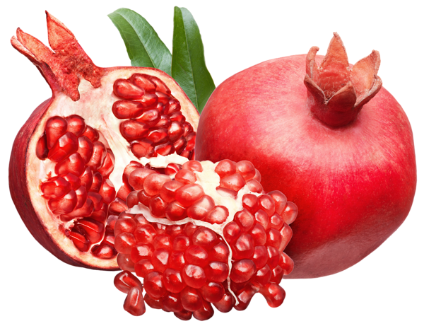 clipart library library Pomegranate clipart. Png picture great pinterest.