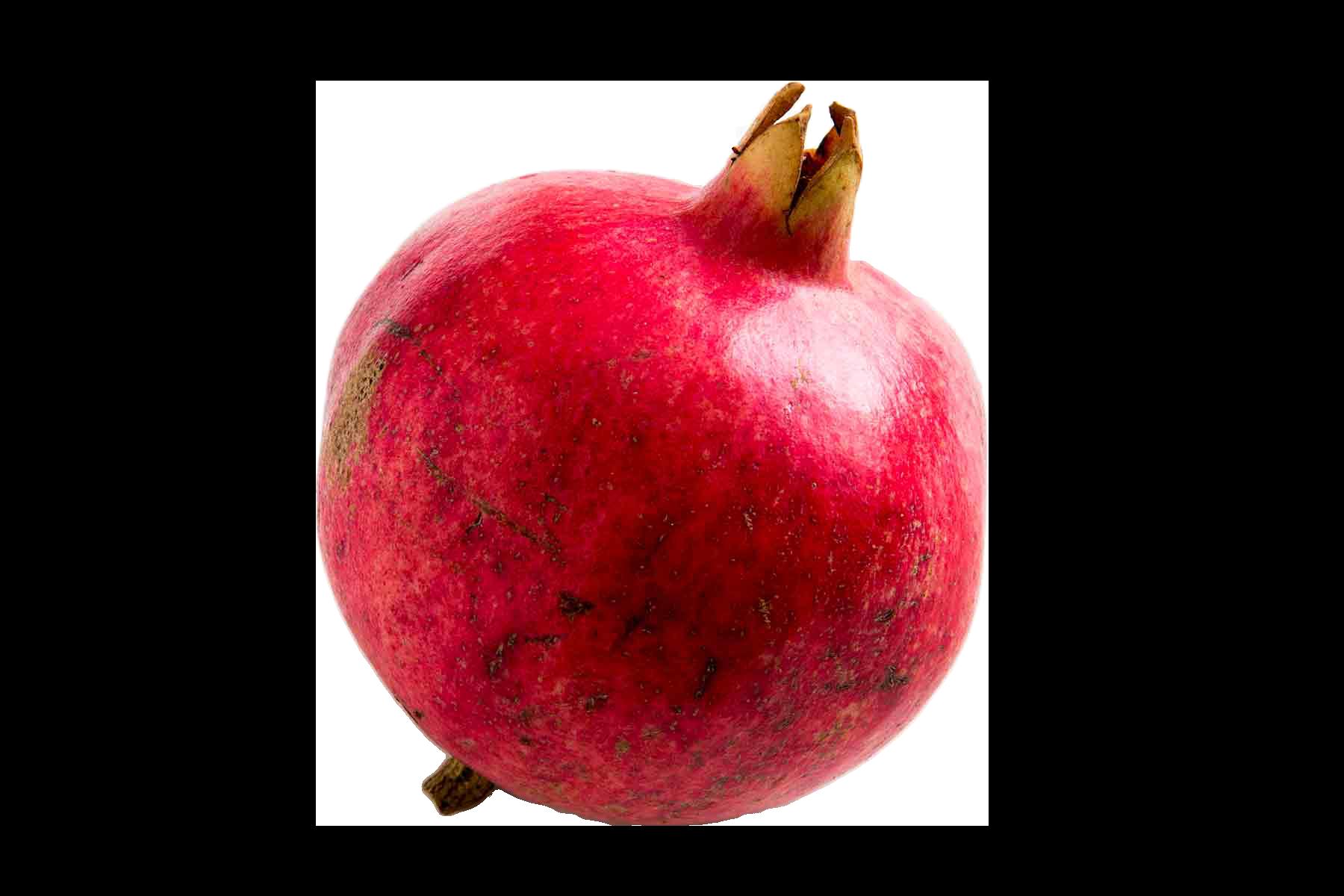 jpg free stock Png image purepng free. Pomegranate clipart pomegranate fruit