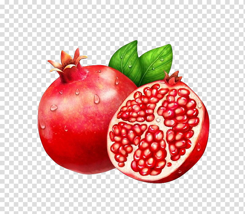 clip art transparent Pomegranate clipart pomegranate fruit. Colorpalace transparent background png