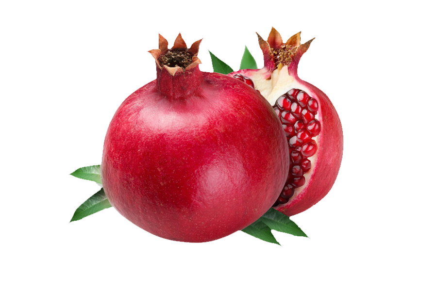 clipart freeuse Pomegranate clipart pomegranate fruit. Clip art transprent png