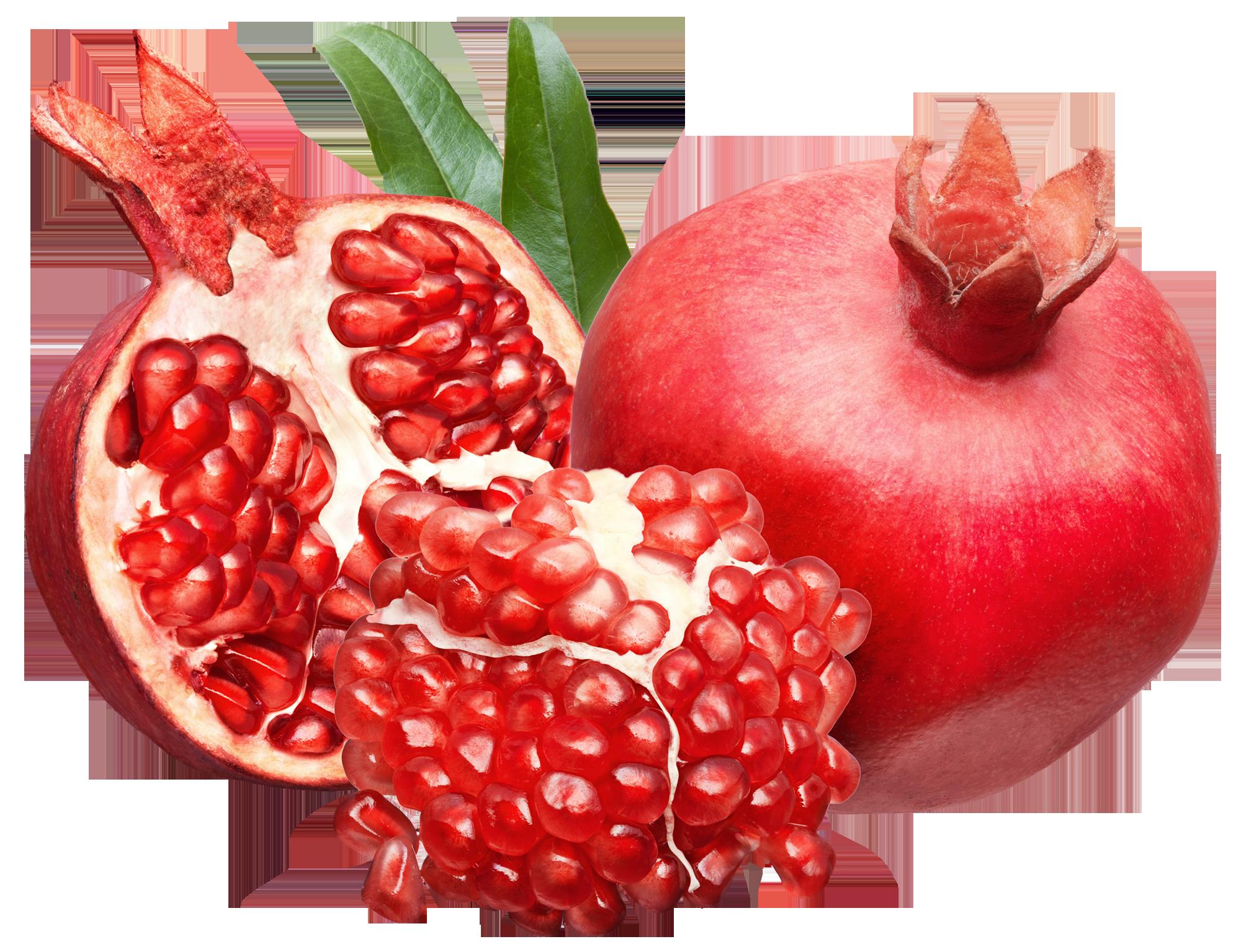 svg free stock Pomegranate clipart pomegranate fruit. Png picture pinterest