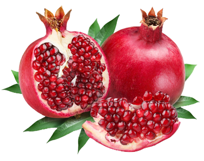image freeuse library Png images free download. Pomegranate clipart pomegranate fruit