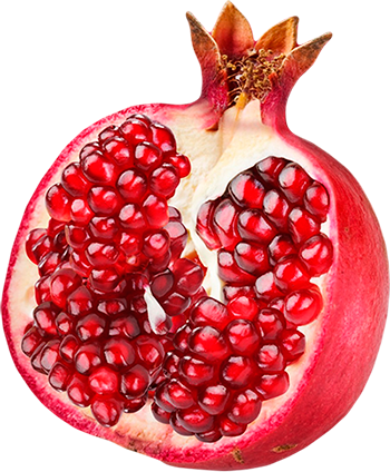 stock Pomegranate PNG image