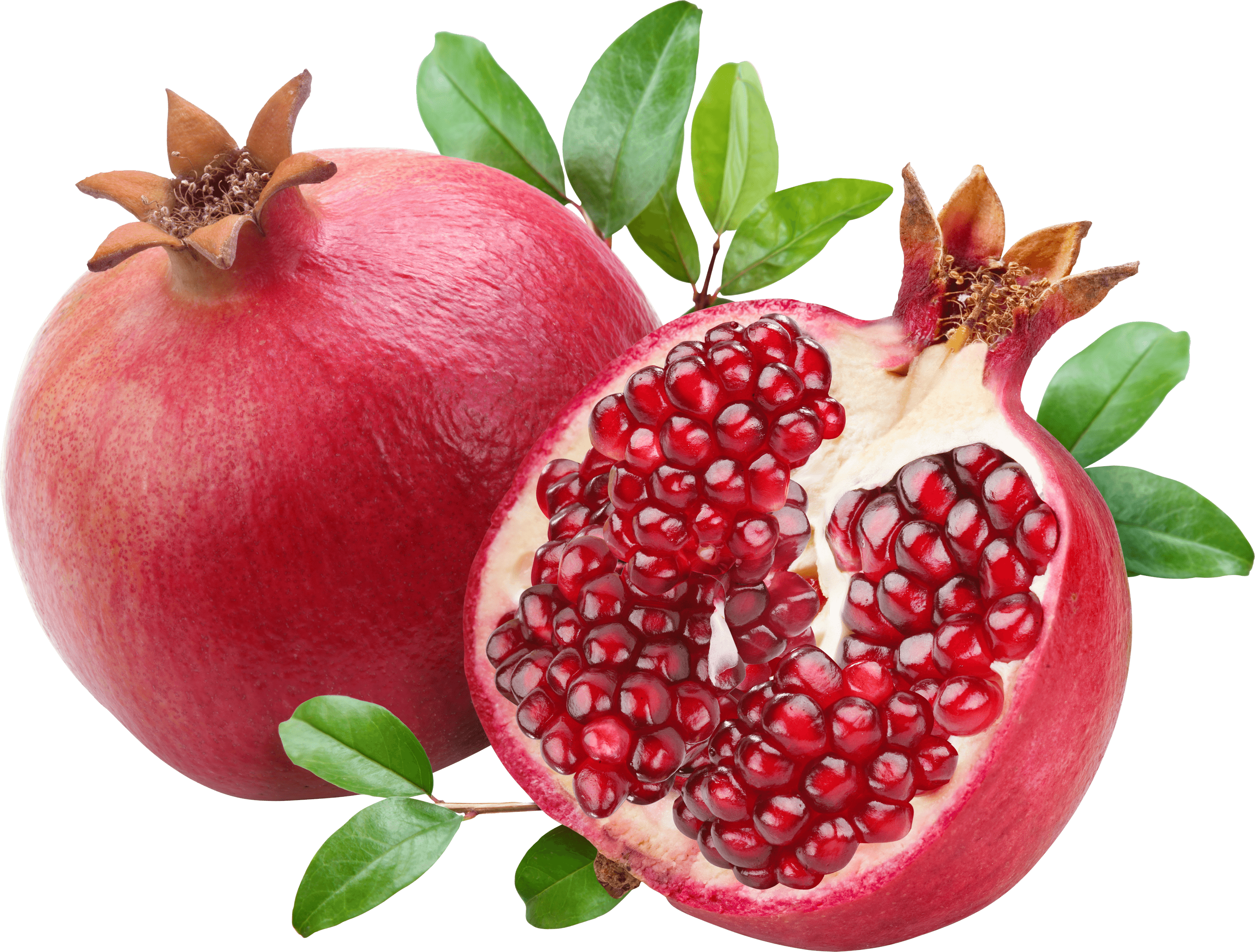 image black and white Open duo transparent png. Pomegranate clipart pomegranate fruit